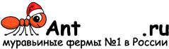 Муравьиные фермы AntFarms.ru - Балашиха
